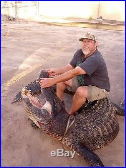 Genuine American Alligator Leather Sling strap Rifle Long gun Shotgun 38 gator A